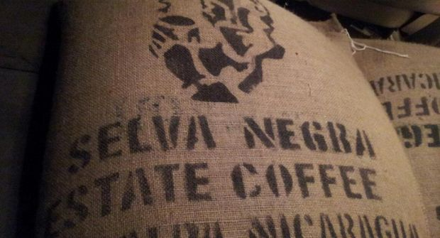 Fair Trade Coffee from Selva Negra
